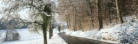 Road in snowy landscape canton Zurich Switzerland