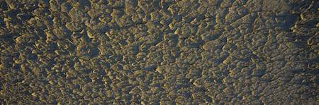 High angle view of a cracked mud surface