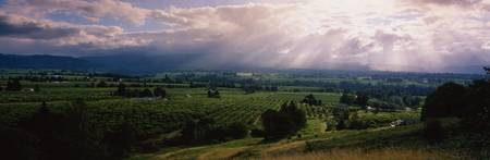 Hood River Valley OR