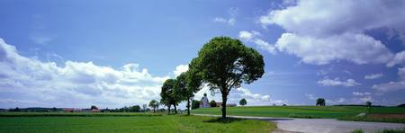 Rural Scene with Road near Moorenweis Germany