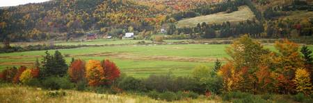 Cape Breton Highlands near North East Margaree