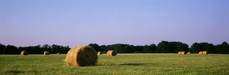 Hay bales Marion Co IL