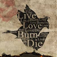 live love burn die