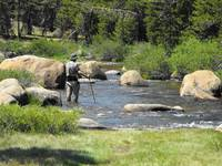 Mountain River Fly Fishing