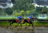 SO SCOTT & EA Head Home At Saratoga #1