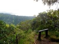 Manoa Cliff Trail Bench