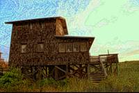 Old Beach Shack~Amelia Island
