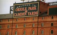 Baseball gallery