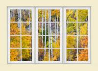 Aspen Tree Magic Cream Picture Window View 3