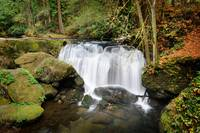 Whatcom Falls, Washington