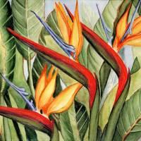 """Birds Of Paradise"" by ARTbyBARstudio"