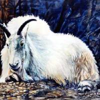BIG%20HORN%20SHEEP__ACRYLIC Art Prints & Posters by Berle Bledsoe