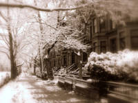 Brooklyn Heights Snow