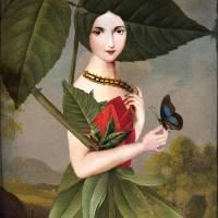 """""""rosegarden"""" by Catrin-Stein"""