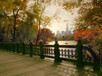 Oak Bridge in Central Park