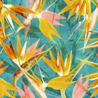 """Birds Of Paradise"" by cozamia"