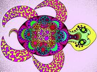 Dream Turtle pink green