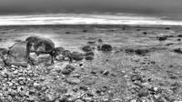 Grand Traverse Bay in Black and White