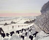 Friesians in Winter