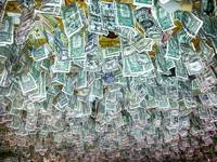 Ceiling Of Dollar Bills