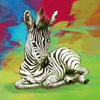 zebra baby stylised painting art poster