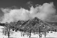 Snowy Trees And The Flatirons Boulder Colorado Bla