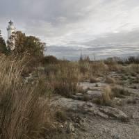 cana island lighthouse by Jacki Mroczkowski