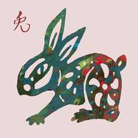 The Chinese Lunar Year 12 Animal - Rabbit/hare Pop