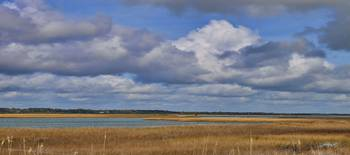 Autumn Marsh at Shell Island