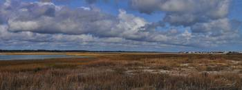 The Marsh from Shell Island to Figure Eight Islan