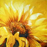 Sunflower turning to the sun