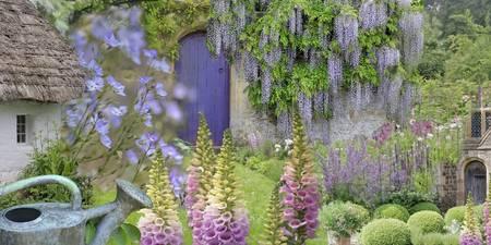 Superior Summer Cottage Garden