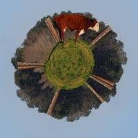 Herford On His Wee Planet