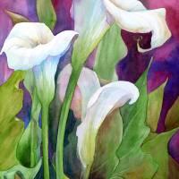 """""""Callas III"""" by MarniMaree"""