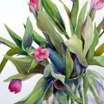 """Tulip Explosion III"" by MarniMaree"