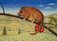 Dormouse Number Two, 1994