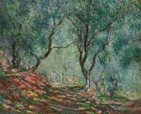 Olive Trees in the Moreno Garden, 1884