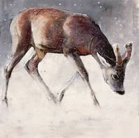 Roe Buck, Winter, 2000