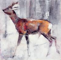 Buck in the snow, 2000