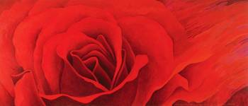 The Rose, in the Festival of Light, 1995