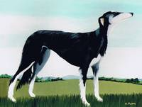Saluki Cross, 1991