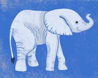 Baby Elephant in Blue
