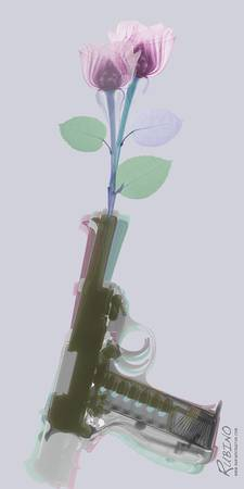 Hand Gun and Flower X-Ray 3