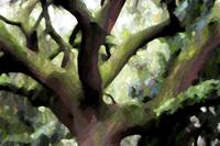 Perfect Climbing Tree - Digital Art