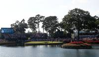 TPC Sawgrass - 17th hole