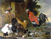 Melchior d'Hondecoeter - A Cock, Hens and Chicks