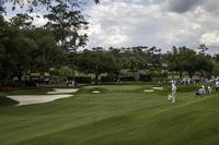 TPC Sawgrass Hole 9 Photo 1