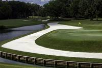 TPC Sawgrass Hole 11 Photo 1