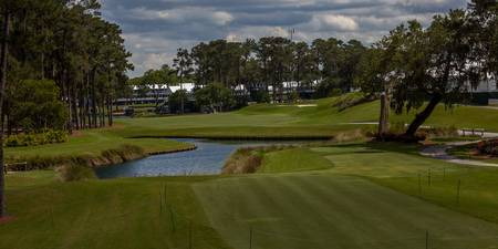 TPC Sawgrass Hole 16 Photo 1 Wide