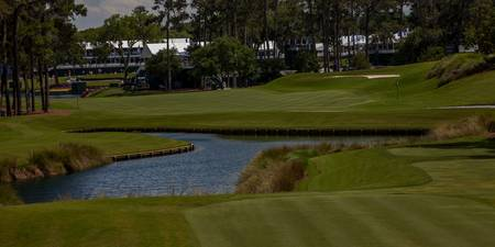 Tpc Sawgrass Hole 16 Photo 2 Wide